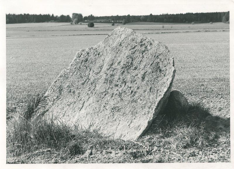 242 b1.jpg