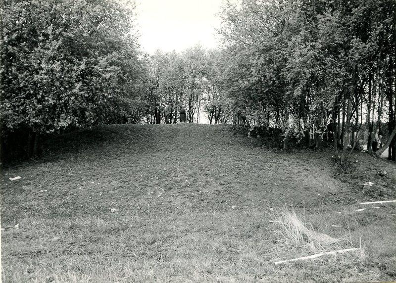 1971-1.jpg
