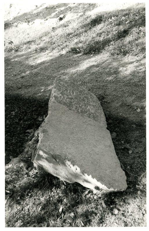 549 c.jpg