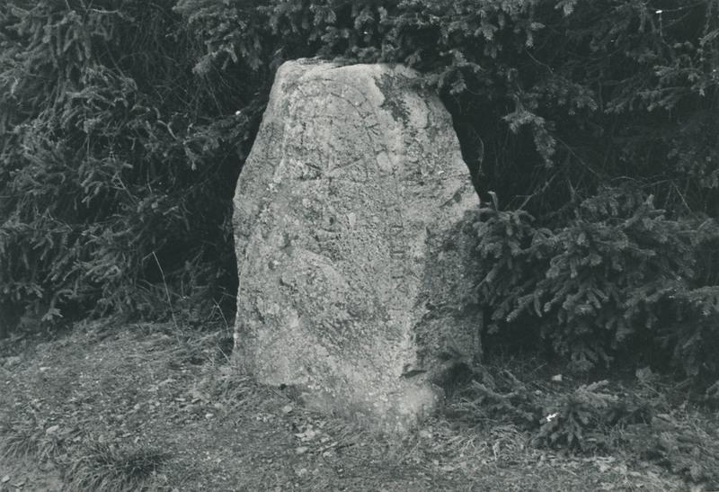 246 a.jpg